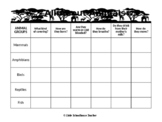 All About Animals Graphic organizer