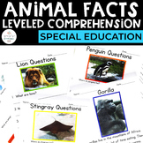 Animal Facts: Leveled Comprehension for Special Education