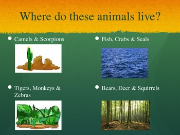 All About Animals Power Point