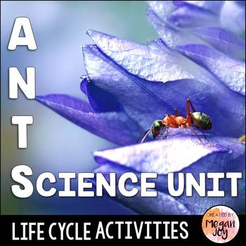 All About Ants Activity Pack