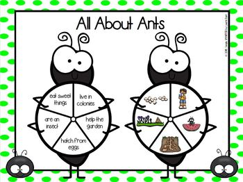 All About Ants Emergent Reader Book AND Interactive Activities