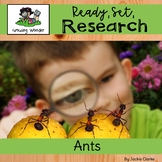 All About Ants (Nonfiction Informational Writing Animal Re