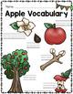 Apples - Apple Activities Unit - Kindergarten First Grade PreK - Slideshow