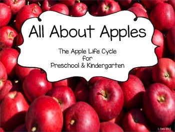 All About Apples - Apple Life Cycle for Preschool and Kind