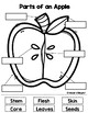 *Updated* All About Apples Learning Packet