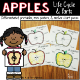 All About Apples! {Life Cycle, Apple Parts}