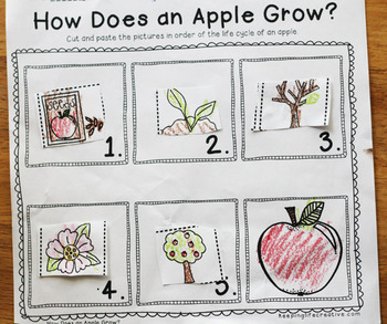 All About Apples {Literacy and Math Activities}