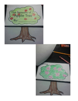 All About Apples Seasons of an Apple Tree