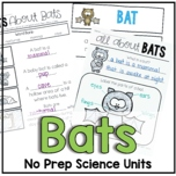 Bat Facts and Habitat