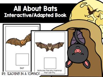 All About Bats BUNDLE