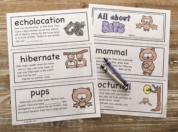 All About Bats Fill in the Blank Book