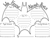 All About Bats Informational Writing Graphic Organizer