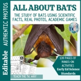 All About Bats- Math, Literacy, & Science