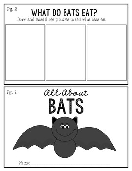 All About Bats / Mini-Unit