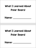 All About Bears Book
