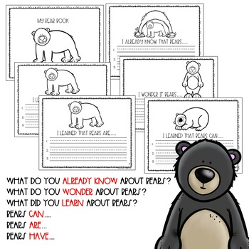 All About Bears: Researching Bears for Emergent Readers