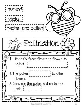 All About Bees Interactive Fun Folder