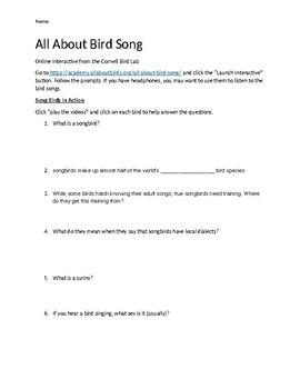All About Bird Song Webquest