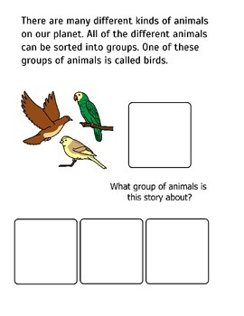 All About Birds! Adapted Book