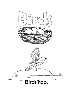 All About Birds Easy Reader