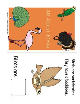 All About Birds! Fact and Vocabulary Book