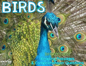 All About Birds Leveled Texts {Differentiated  Reading Pas