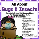 All About Bugs & Insects 5-Day Lesson Plan for Preschool, PreK, K & Homeschool