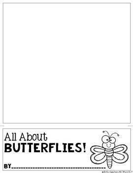 All About Butterflies!
