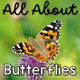 All About Butterflies