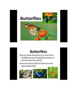 All About Butterflies PowerPoint slide show