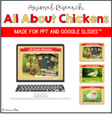 All About Chickens PowerPoint