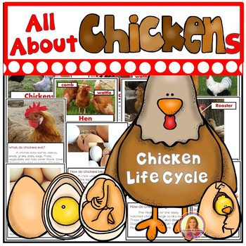 All About Chickens and The Life Cycle of a Chicken