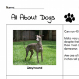 All About Dogs | 4-page handout packet fun reading