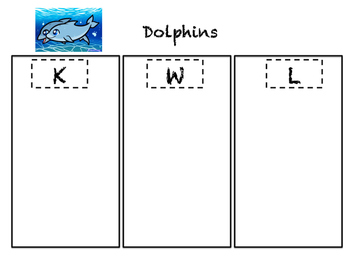 All About Dolphins Pack