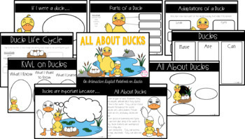 All About Ducks Interactive Digital Notebook {PRINT & DIGITAL}