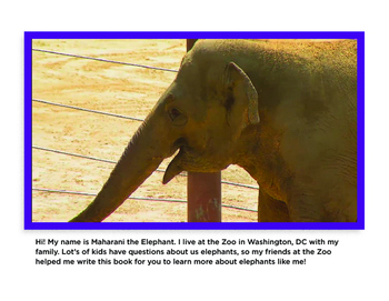 All About Elephants Non-Fiction Book PK-1