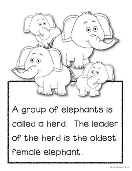 All About Elephants a non fiction book for beginning readers