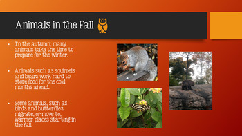 All About Fall for K  - 2