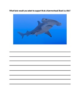 All About Fish Lesson Worksheet