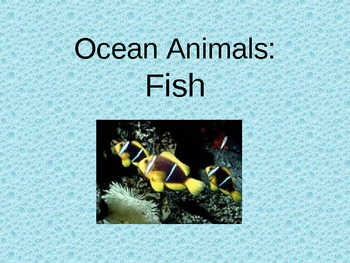 All About Fish Powerpoint