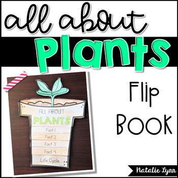 All About Flip Book Bundle