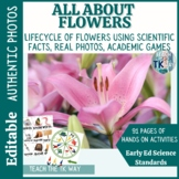 All About Flowers {{EDITABLE}}