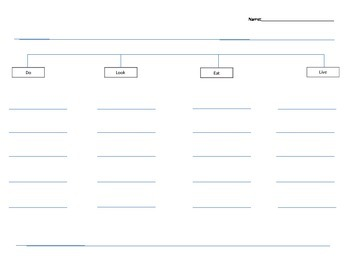 All About Graphc Organizer -Editable
