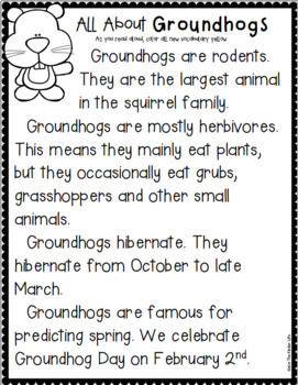 Groundhog Day An Interactive Notebook