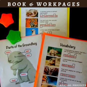 All About Groundhogs Nonfiction Unit