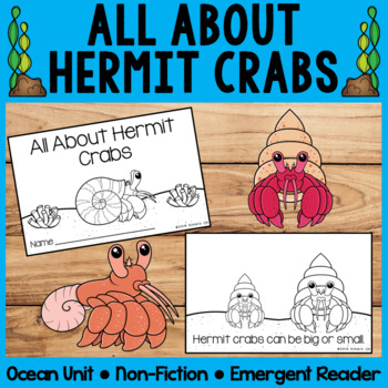 All About Hermit Crabs   Emergent Readers   Non-Fiction   Ocean Animals
