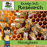All About Honey Bees (Nonfiction Informational Writing Ani