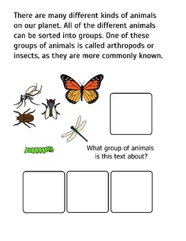 All About Insects! Adapted Book