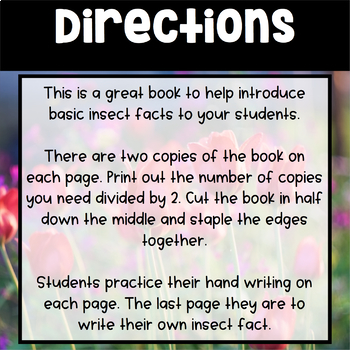 All About Insects - Fact Book for Students