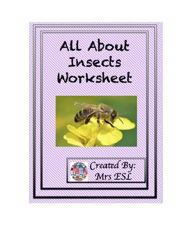 All About Insects Lesson Worksheet